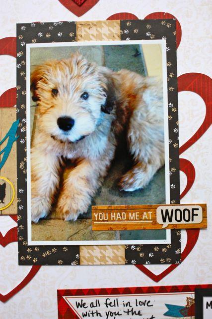 blog puppy 5