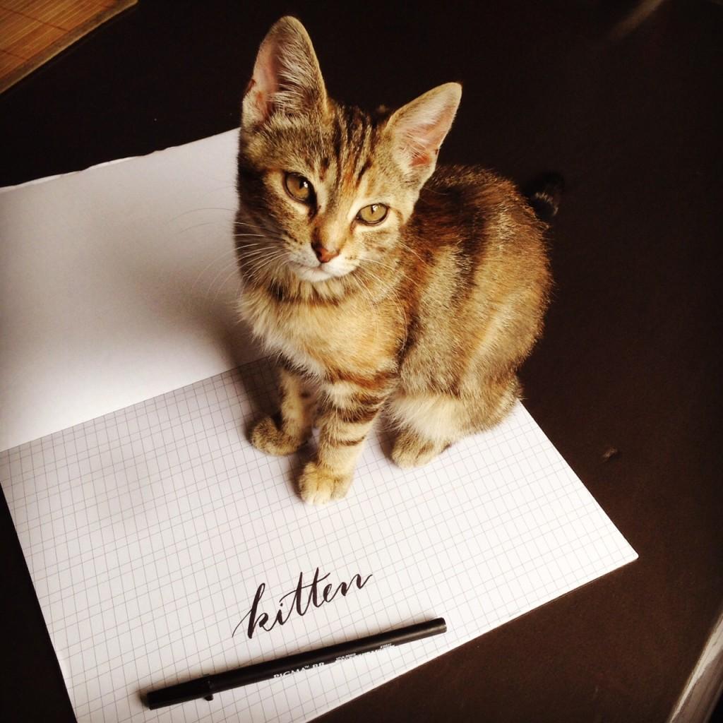 @kellycreates #handlettering #lettering #brushlettering