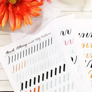 @kellycreates #brushlettering #learn #guide #worksheets #practice #drills #script #calligraphy #brushcalligraphy