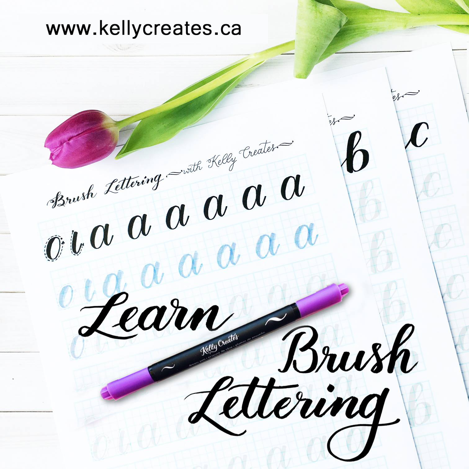 image relating to Brush Lettering Practice Sheets Printable identified as Study Brush Lettering with Educate Worksheets Kelly Makes