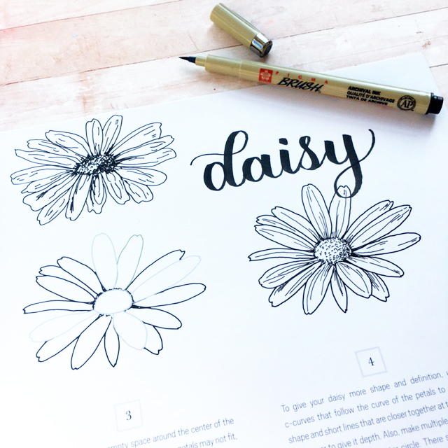 SO easy to learn drawing flowers with this NEW How to Draw Modern Florals book by Alli Koch and awesome tutorials on Kelly Creates Facebook group Kelly Creates Art & Calligraphy