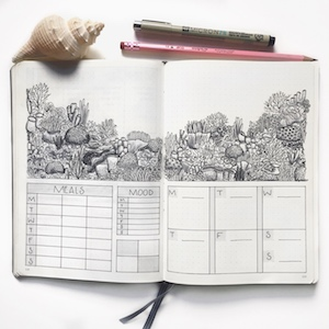 planner-coral-reef-page